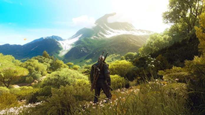 Geralt looking at mountain in The Witcher 3.