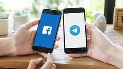 Rusya, Facebook ve Telegram'a 27 milyon ruble ceza kesti