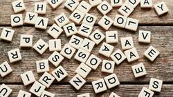 Kürtçe Biji Serok nedir, ne demek? Biji Serok kelime anlamı