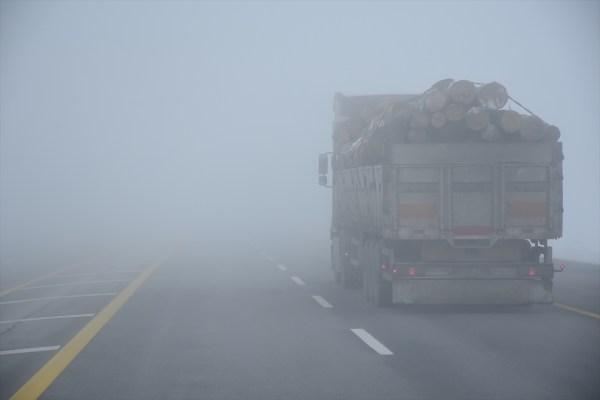 Muş'ta yoğun sis