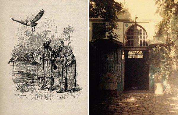 Dünyanın ilk hayvan hastanesini Osmanlı açmıştı
