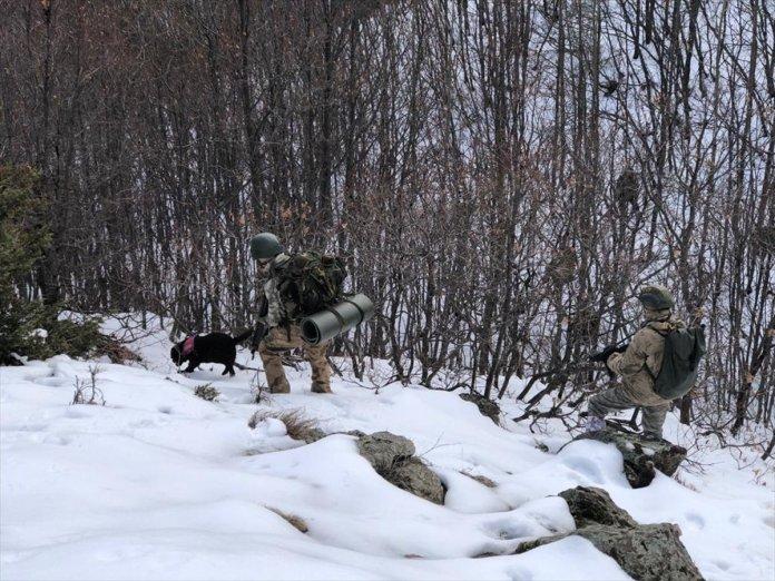 Bitlis ve Siirt te Eren-11 Sehi Ormanları Operasyonu başlatıldı #9