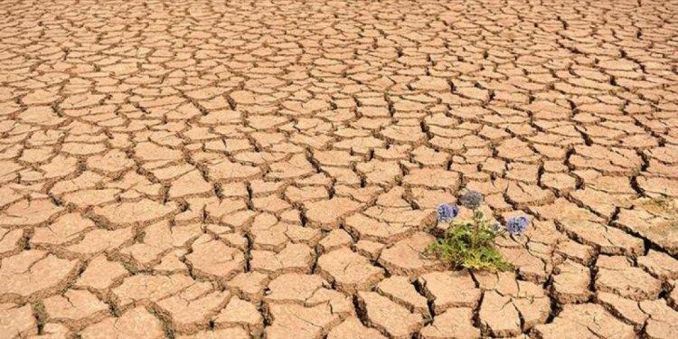 Küresel ısınmadaki gerileme, sıtmanın yayılmasını engelledi #1