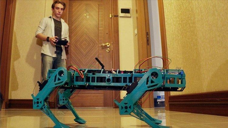Eskişehirli lise öğrencisi, farklı iş kollarına uygun robot köpek geliştirdi #1