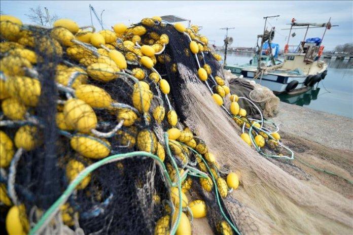 Balık avı yasağı başladı mı? Denizlerde av yasağı tarihleri 2021 #1