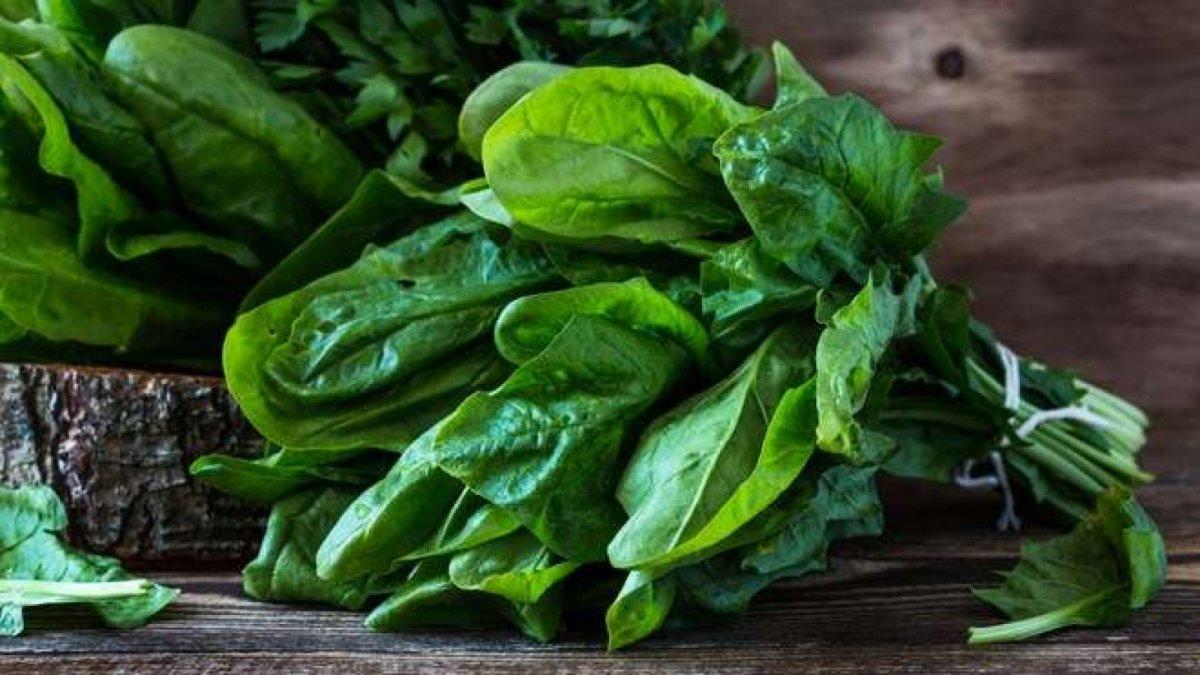 diyetinize ekleyebileceginiz yuksek proteinli 10 sebze 7320