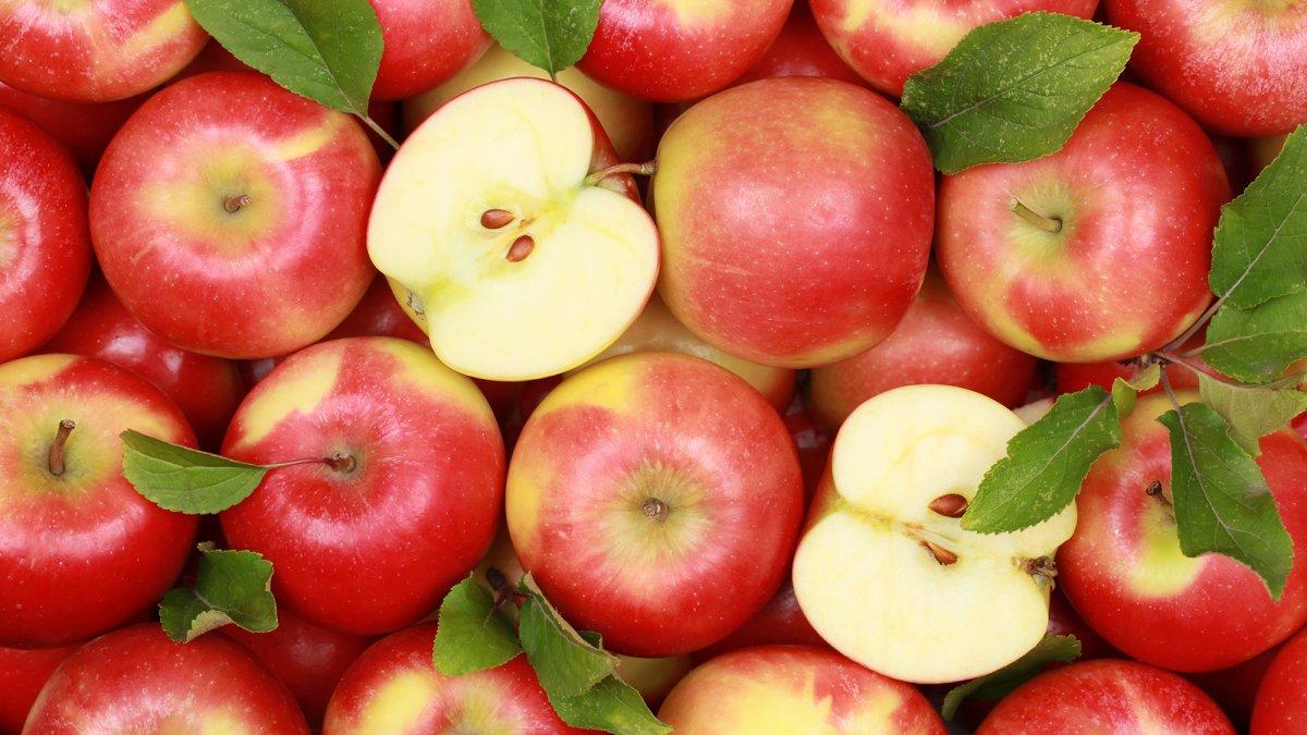 vitamini kabugunda elma kabugunun 5 faydasi 4519