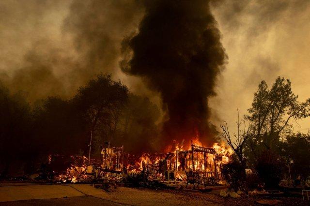 Kaliforniya daki yangınında bir kadının ayı idrarını içmek için yaktığı ateş sorumlu tutuldu #4
