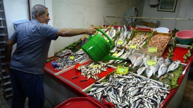 Çanakkale'de tezgahlarda lüfer bolluğu yaşanıyor #3