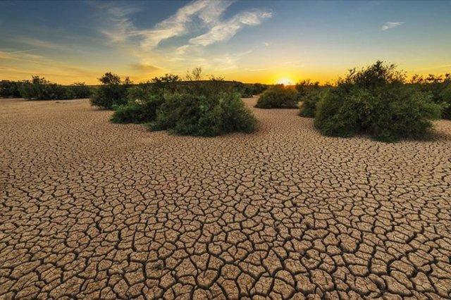 Google, iklim değişikliğini inkar edenlere karşı yeni bir karar aldı #1