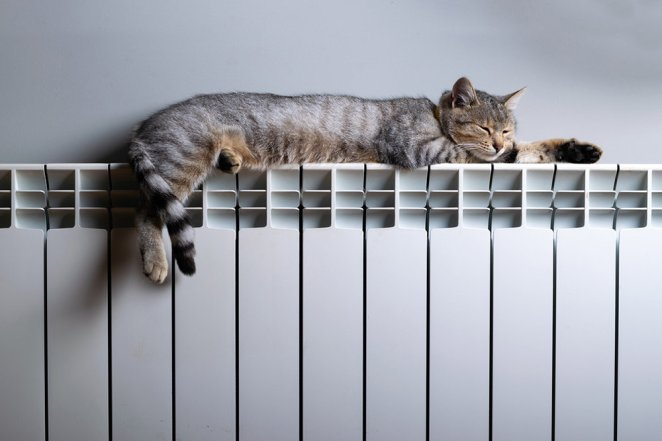 7 different situations #5 for the ideal room temperature