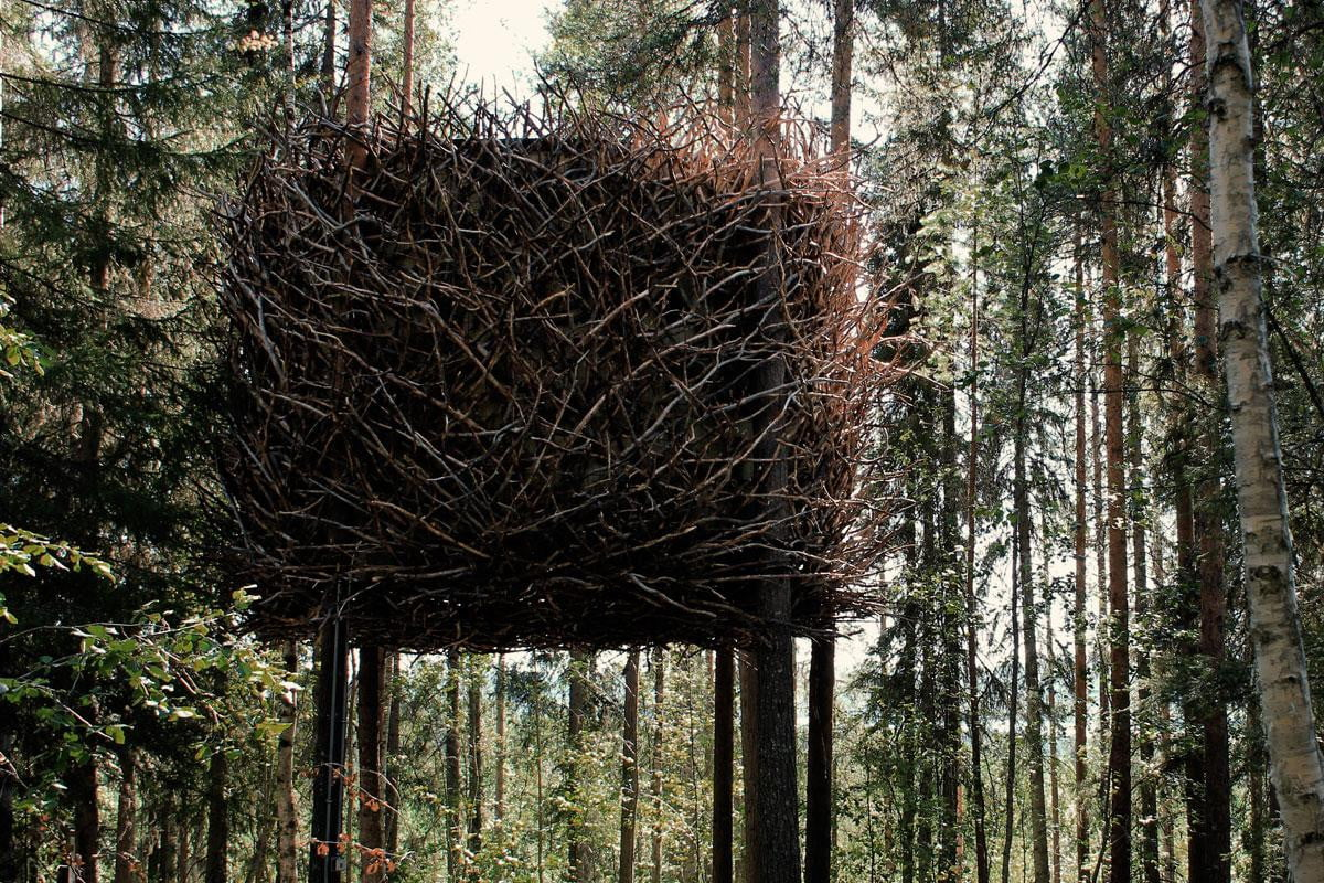 The Most Epic Treehouses Ever Built  Digital Trends
