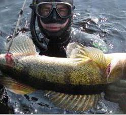 Рыбалка в Сумах и области. Прогноз клева