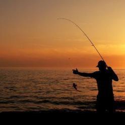 Особенности ночной рыбалки летом