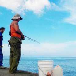Рыбалка на Кубе: особенности, интересные факты и отзывы