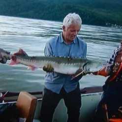 Калужская рыбалка. Рыбалка в Калужской области