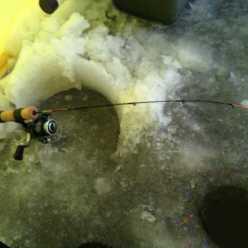 Зимний фидер со льда: оснастка. Рыболовные секреты