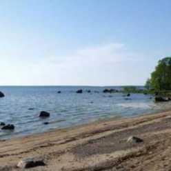 Рыбалка на Финском заливе на дамбе. Рыбалка в июне