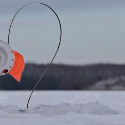 Рыбалка на жерлицы и ловля плотвы и окуня на мормышку. Зимняя рыбалка.