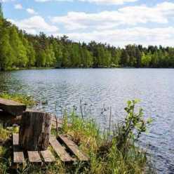 Озеро Монетка - лучшее место для рыбака