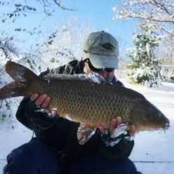 Ловля карпа зимой: техника ловли, снасти, прикормки и приманки