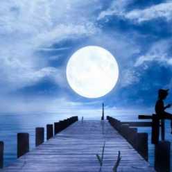 Влияние Луны на клев рыбы. При какой Луне лучший клев рыбы