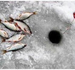 Поплавочная зимняя удочка: особенности, виды, характеристики и отзывы