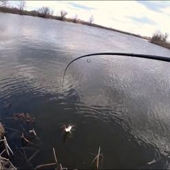 Рыбалка. Спиннинг весной. Ловля щуки на джиг.