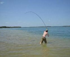 Секреты рыбалки: удочки для дальнего заброса