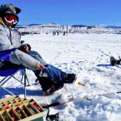 Зимний воблер: виды и описание, особенности применения, фото