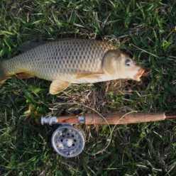Ловля на соску - метод для начинающих рыболовов