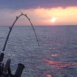 Секреты рыбалки: когда клюет карась лучше всего?