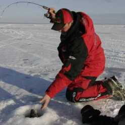 Зимняя ловля плотвы: особенности, способы и рекомендации