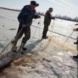 Ловля рыбы сетью: советы