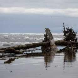 Рыбалка в Рыбинске: рыбные места, фото, отзывы