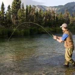 Рыбалка на Северной Двине - особенности, интересные факты и отзывы