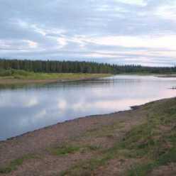 Пижма (река) - отличное место для рыбалки