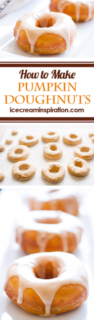 Pumpkin donuts with maple glaze are the perfect donuts for Fall. Real pumpkin and maple syrup makes this the best donut recipe around!