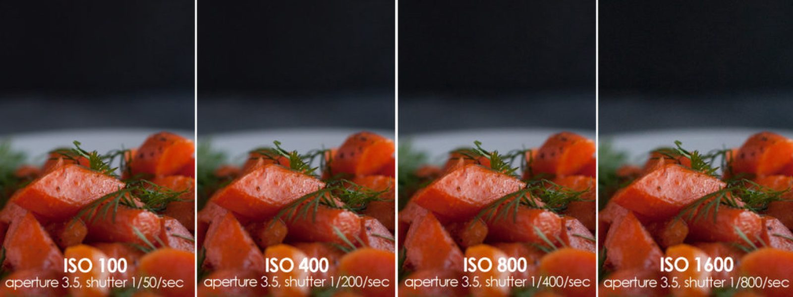 Food Photography Essentials--Mastering ISO by Certified Professional Photographer Melissa Howell of Ice Cream and Inspiration