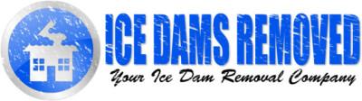 Ice Dam Removal Company Logo