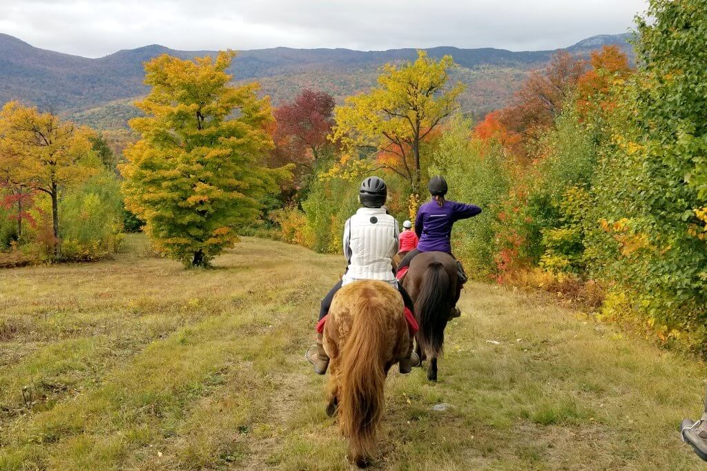 Trail Rides | Vermont Icelandic Horse Farm & Vacation Rental in Waitsfield