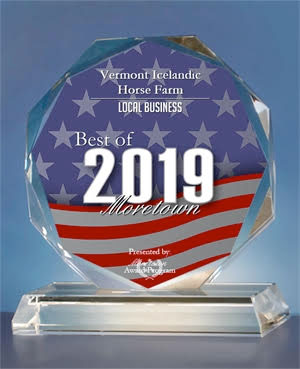 2019 Best of Moretown Award | Vermont Icelandic Horse Farm & Vacation Rental in Waitsfield