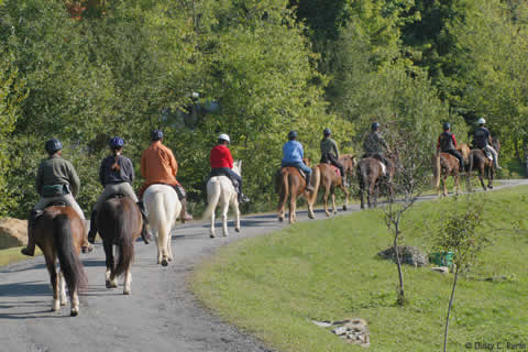 Reservations | Vermont Horse Farm & Vacation Rental in Fayston, Vermont