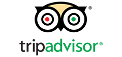 Trip Advisor | Vermont Icelandic Horse Farm & Lodging in Waitsfield