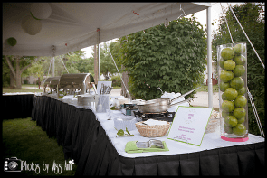 elite-catering-setup-plymouth-michigan-30th-birthday-party-photos-by-miss-ann