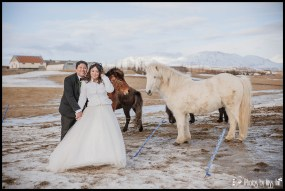 iceland-wedding-couple-with-icelandic-horses-photos-by-miss-ann