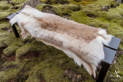 iceland-wedding-rental-reindeer-fur-rental