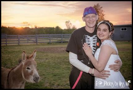 Funny Wedding Photos Photo bombed by a donkey