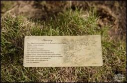 Iceland Wedding Schedule Timeline Card