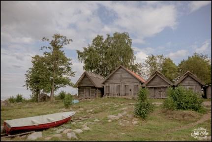 Estonia Wedding Photographer and Planner-8